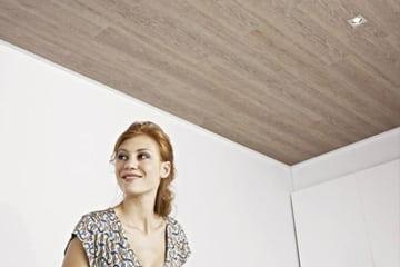 Plafonds Bij De Graaf Home
